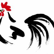 niwatori-sumi-yoko3
